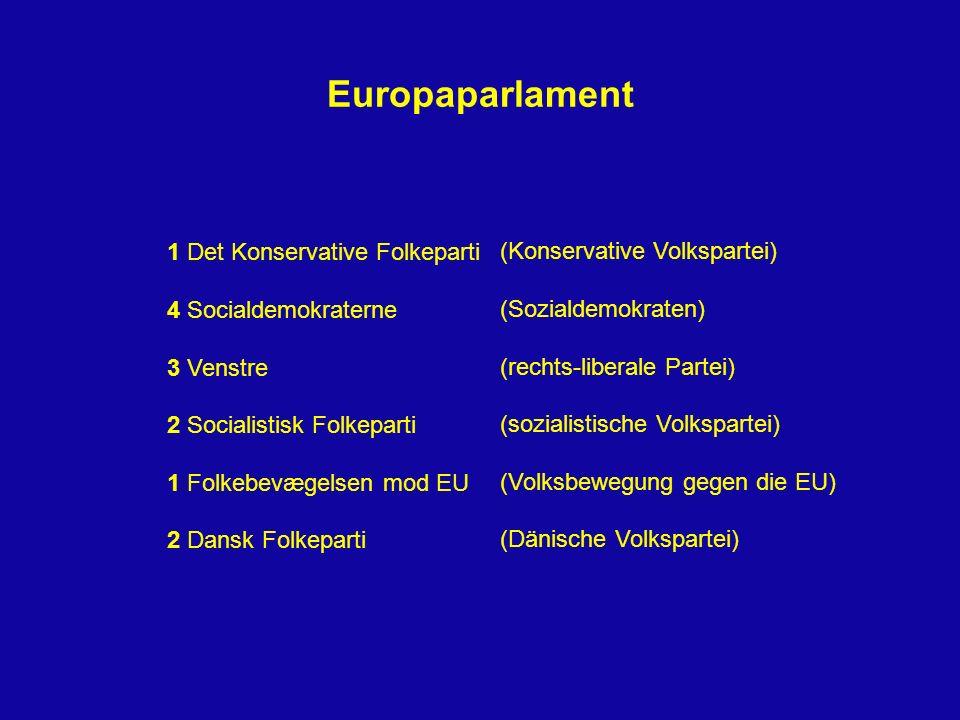 Europaparlament 1 Det Konservative Folkeparti