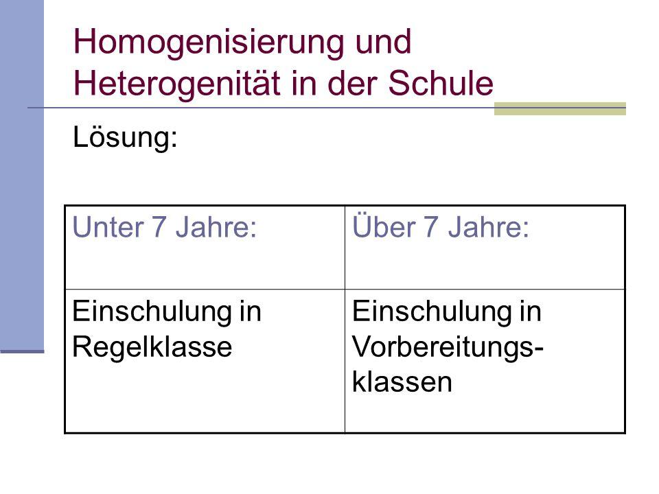 Homogenisierung und Heterogenität in der Schule