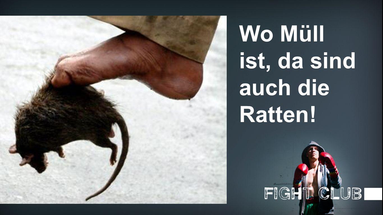 Ratte Wo Müll ist, da sind auch die Ratten!