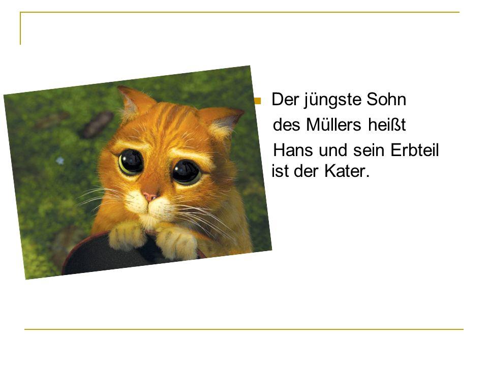 Der jüngste Sohn des Müllers heißt Hans und sein Erbteil ist der Kater.