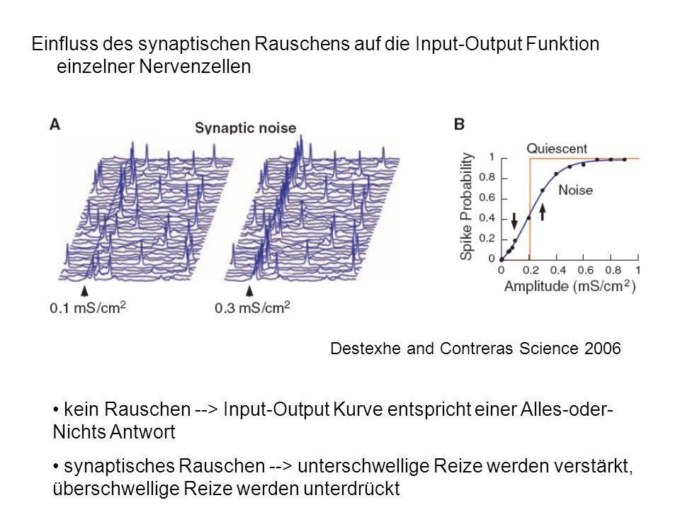 Einfluss des synaptischen Rauschens auf die Input-Output Funktion einzelner Nervenzellen