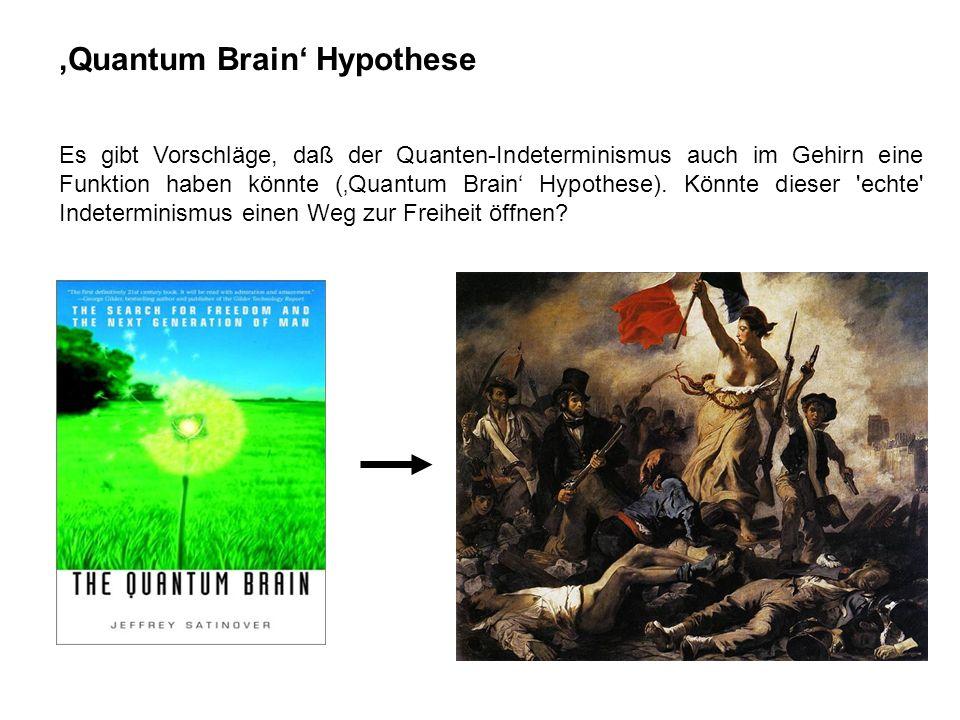 'Quantum Brain' Hypothese