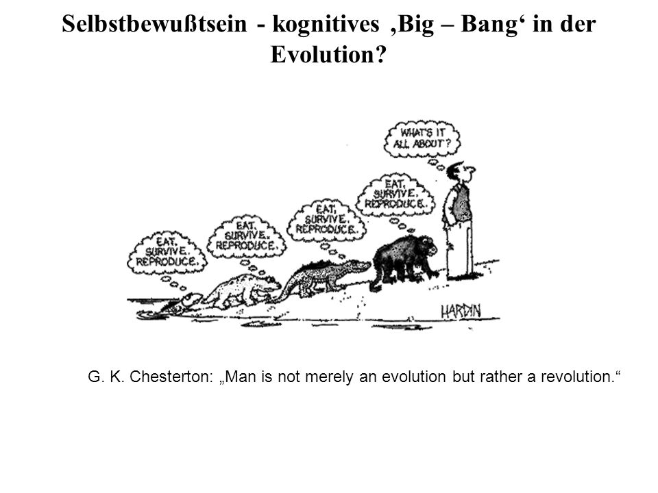 Selbstbewußtsein - kognitives 'Big – Bang' in der Evolution