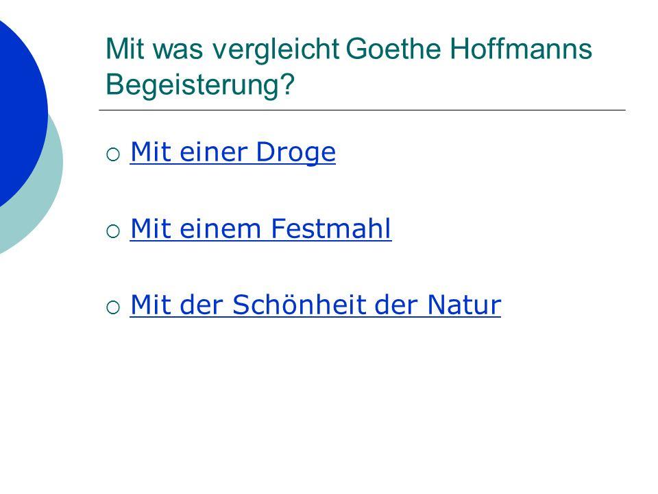 Mit was vergleicht Goethe Hoffmanns Begeisterung