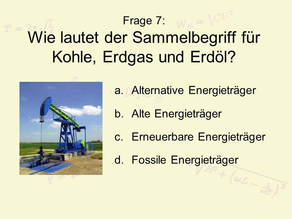 Frage 7: Wie lautet der Sammelbegriff für Kohle, Erdgas und Erdöl