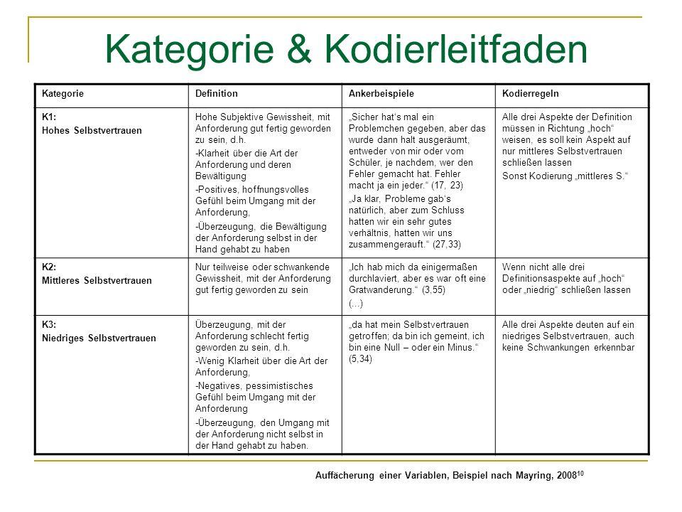 Kategorie & Kodierleitfaden