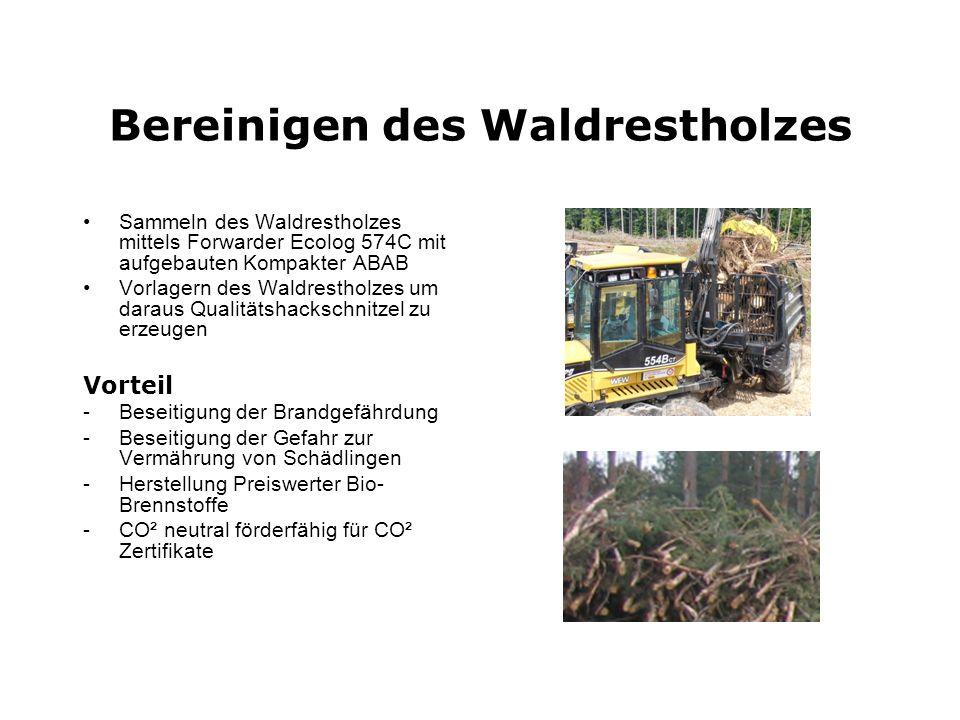 Bereinigen des Waldrestholzes