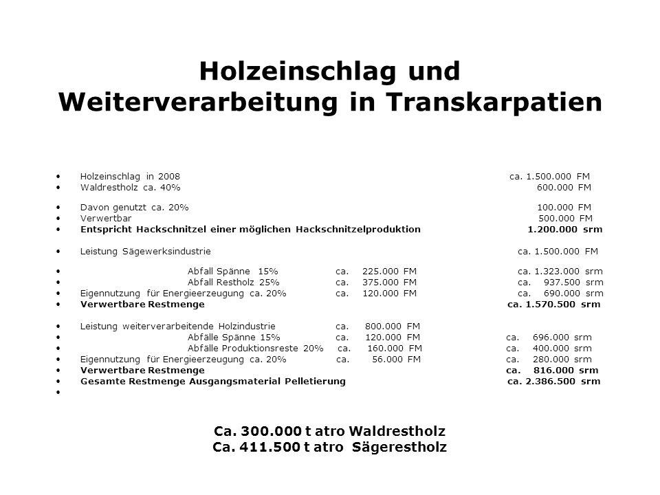 Holzeinschlag und Weiterverarbeitung in Transkarpatien