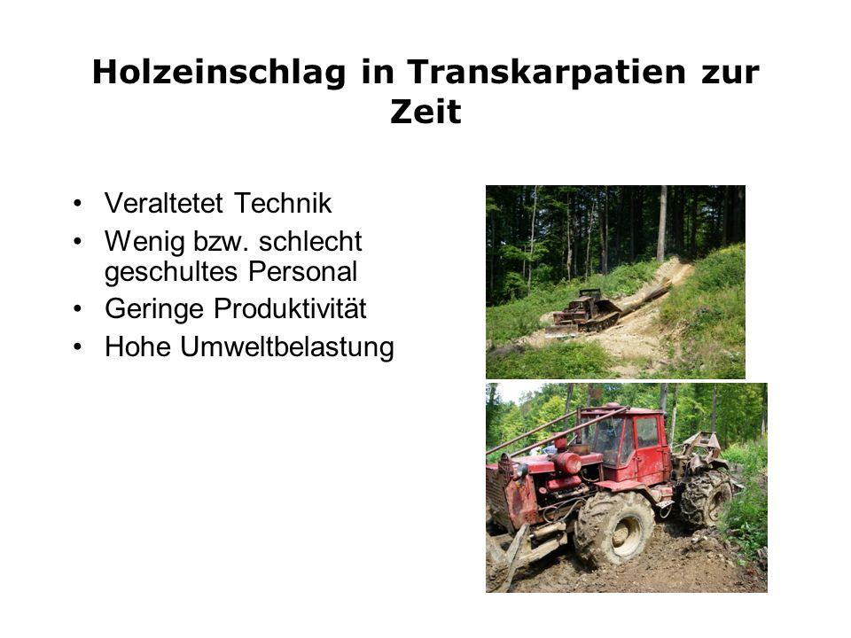 Holzeinschlag in Transkarpatien zur Zeit