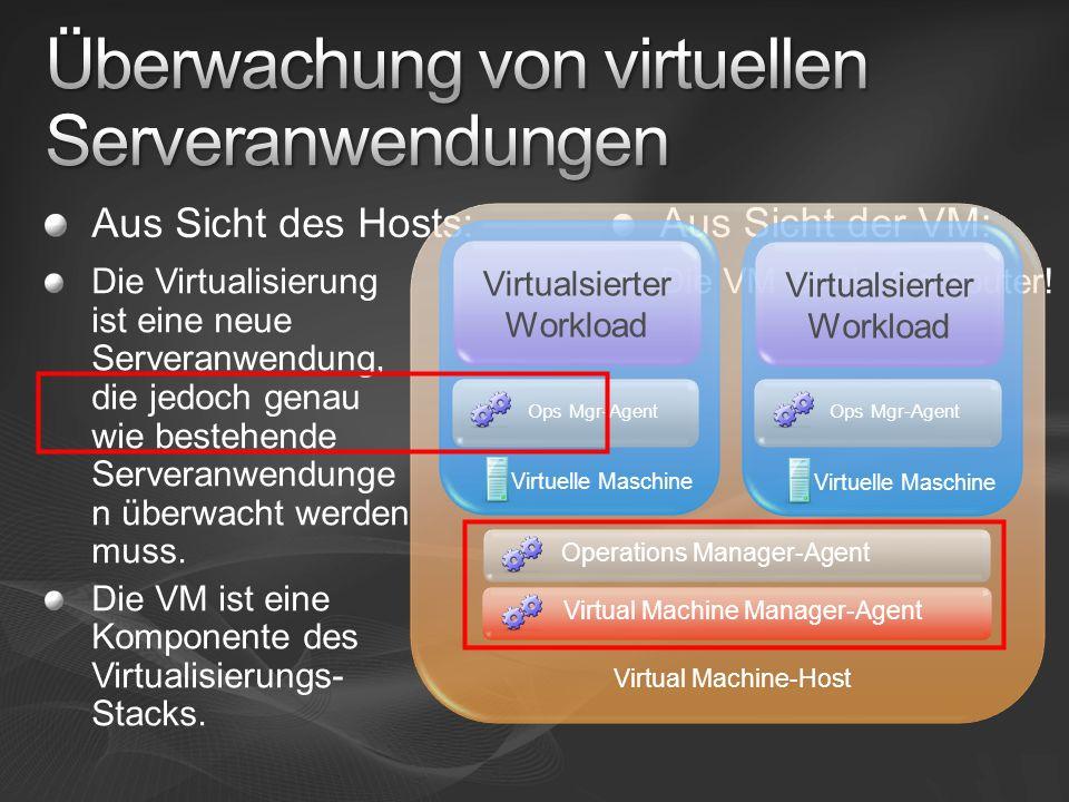 Überwachung von virtuellen Serveranwendungen