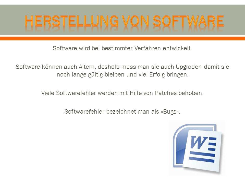 Herstellung von Software