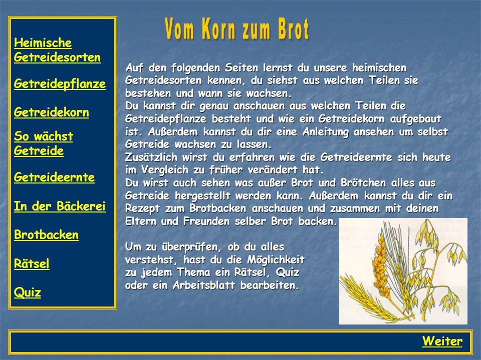 Auf den folgenden Seiten lernst du unsere heimischen Getreidesorten ...