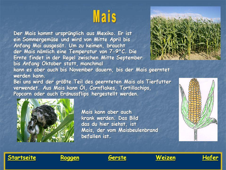 Startseite Roggen Gerste Weizen Hafer