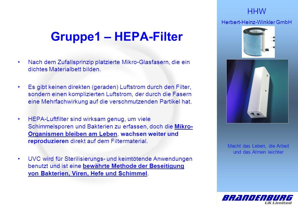 Gruppe1 – HEPA-Filter Nach dem Zufallsprinzip platzierte Mikro-Glasfasern, die ein dichtes Materialbett bilden.