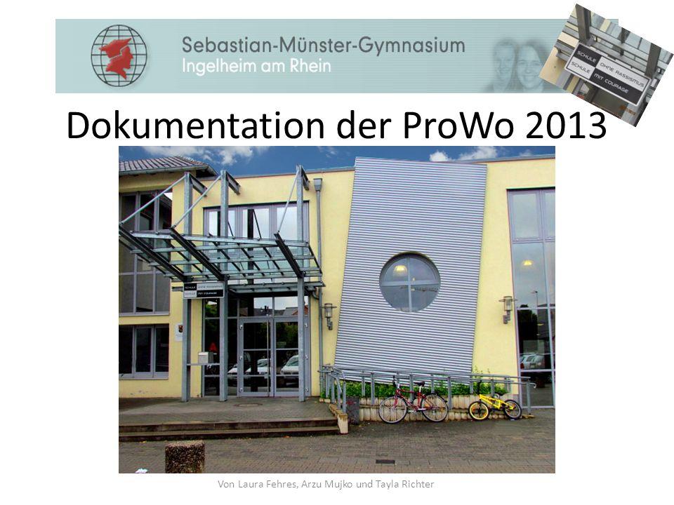 Dokumentation der ProWo 2013