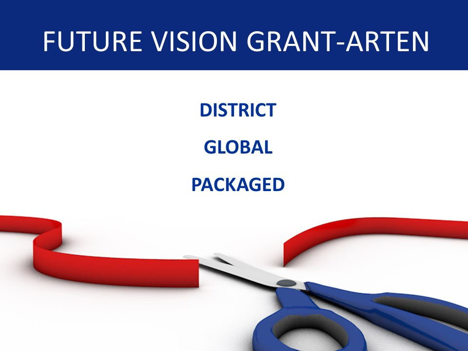 FUTURE VISION GRANT-ARTEN