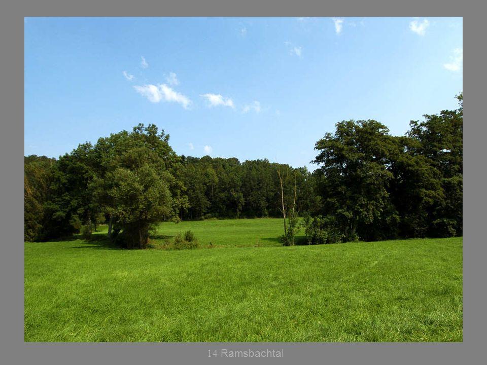 14 Ramsbachtal