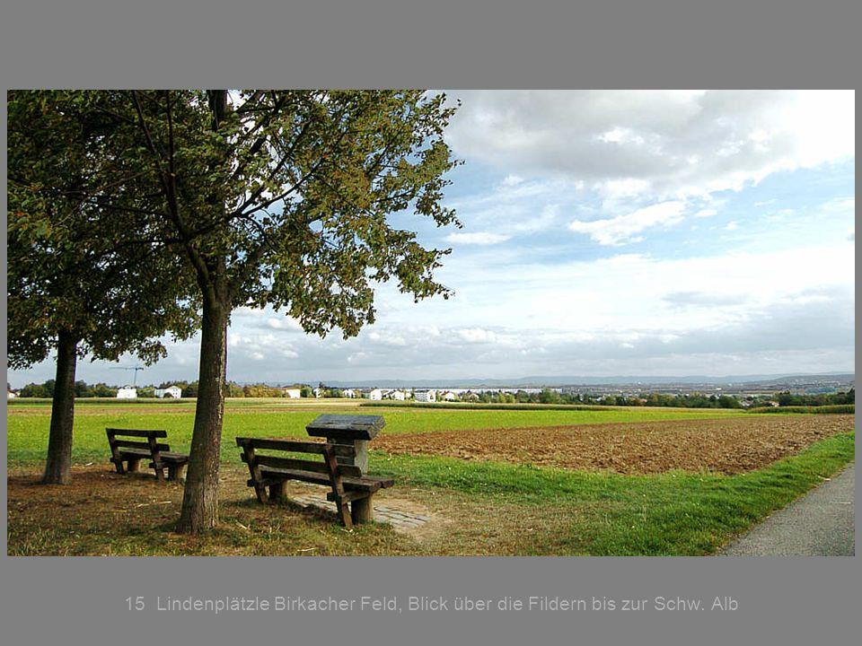 15 Lindenplätzle Birkacher Feld, Blick über die Fildern bis zur Schw