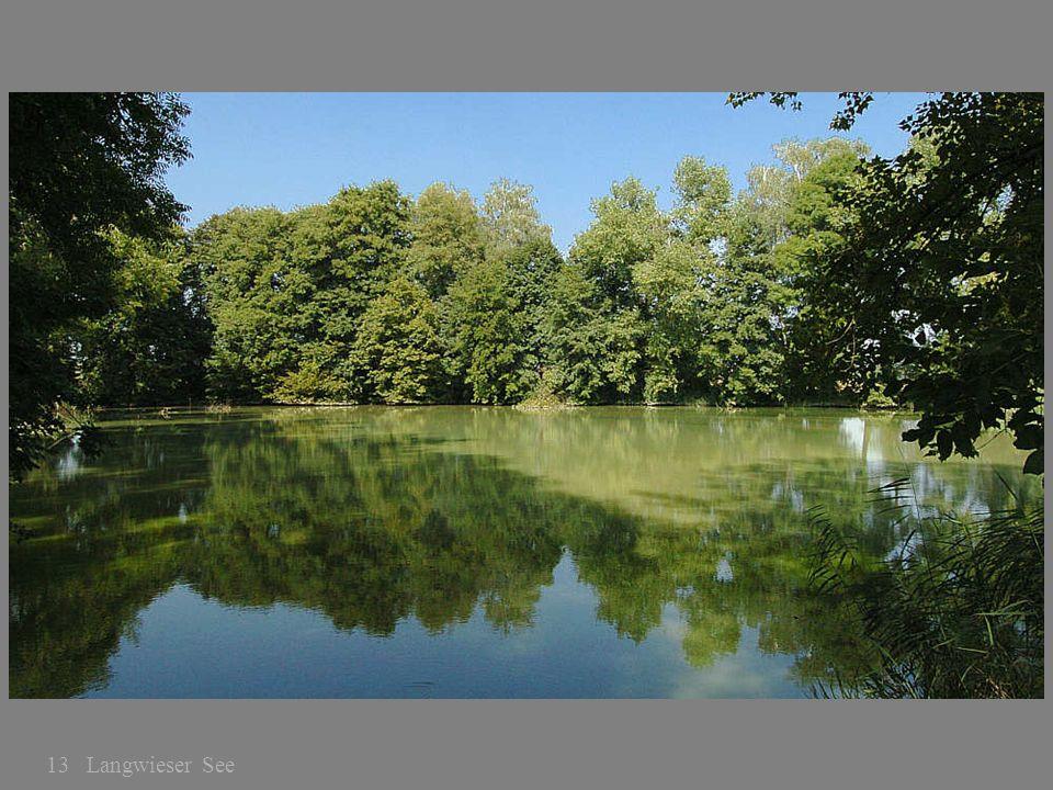 13 Langwieser See