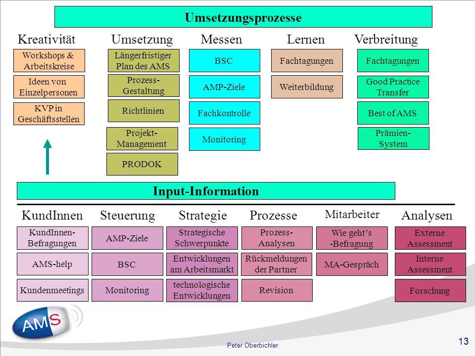 Umsetzungsprozesse Input-Information