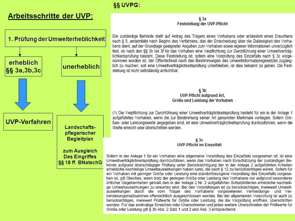 Arbeitsschritte der UVP: