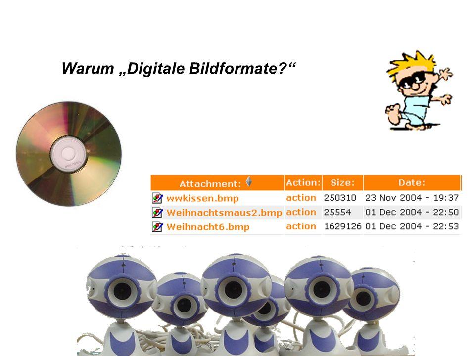 "Warum ""Digitale Bildformate"