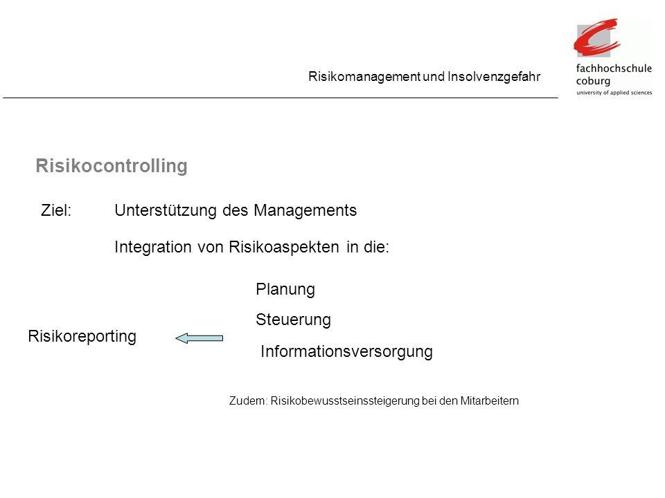 Risikocontrolling Ziel: Unterstützung des Managements