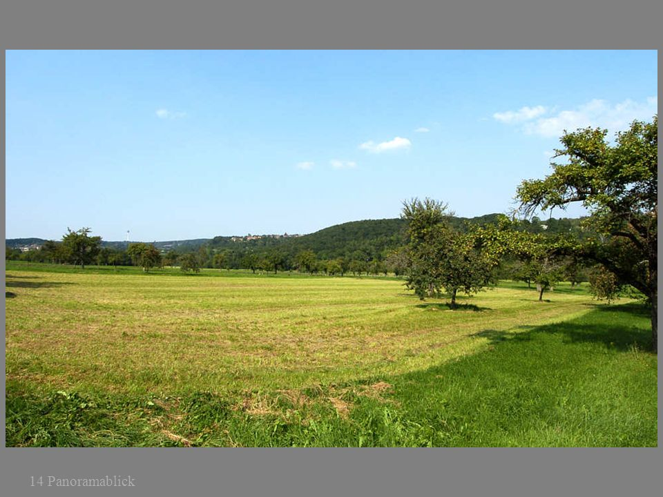 14 Panoramablick