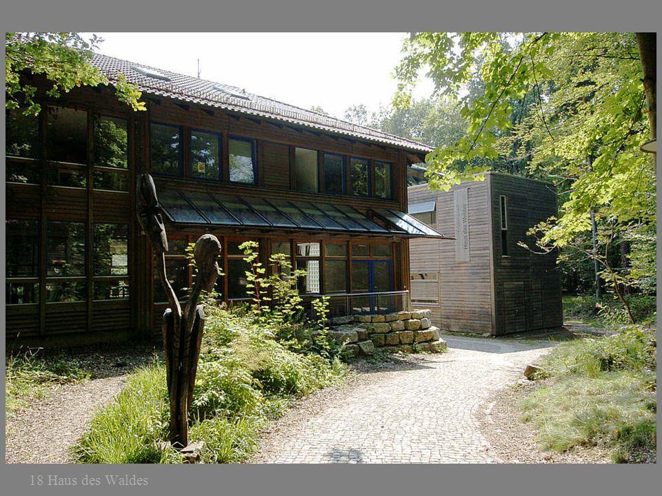 18 Haus des Waldes