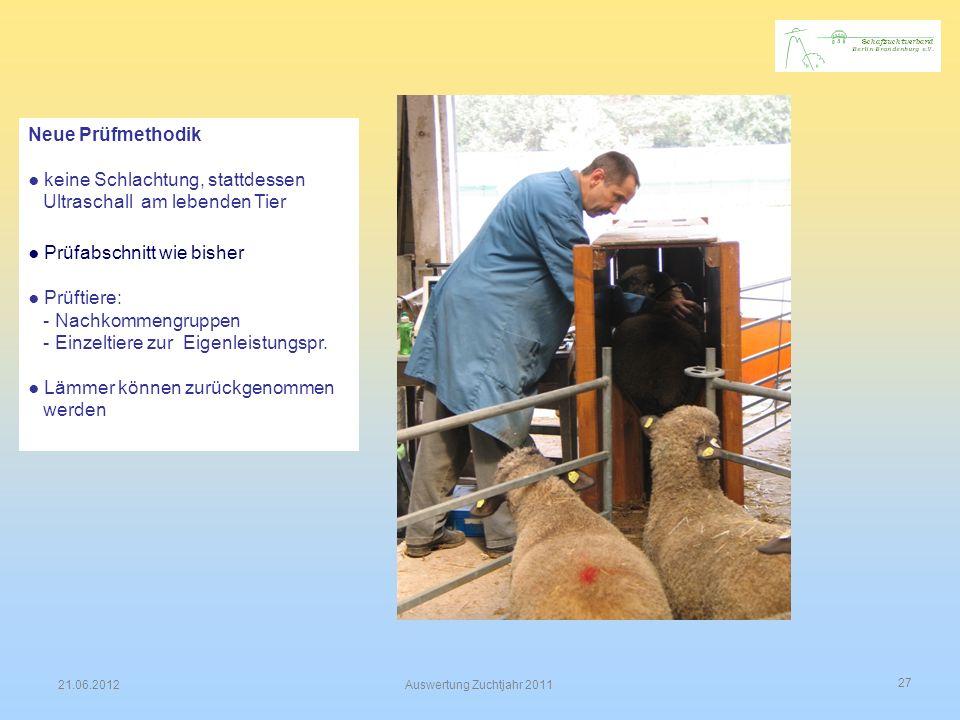 ● keine Schlachtung, stattdessen Ultraschall am lebenden Tier