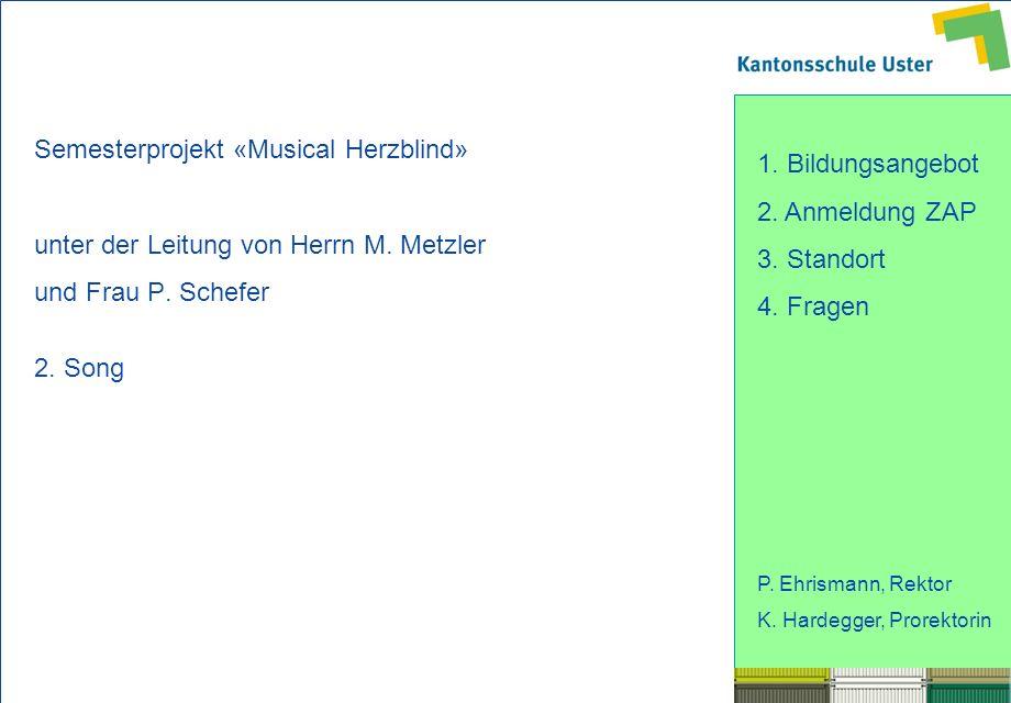 Semesterprojekt «Musical Herzblind»