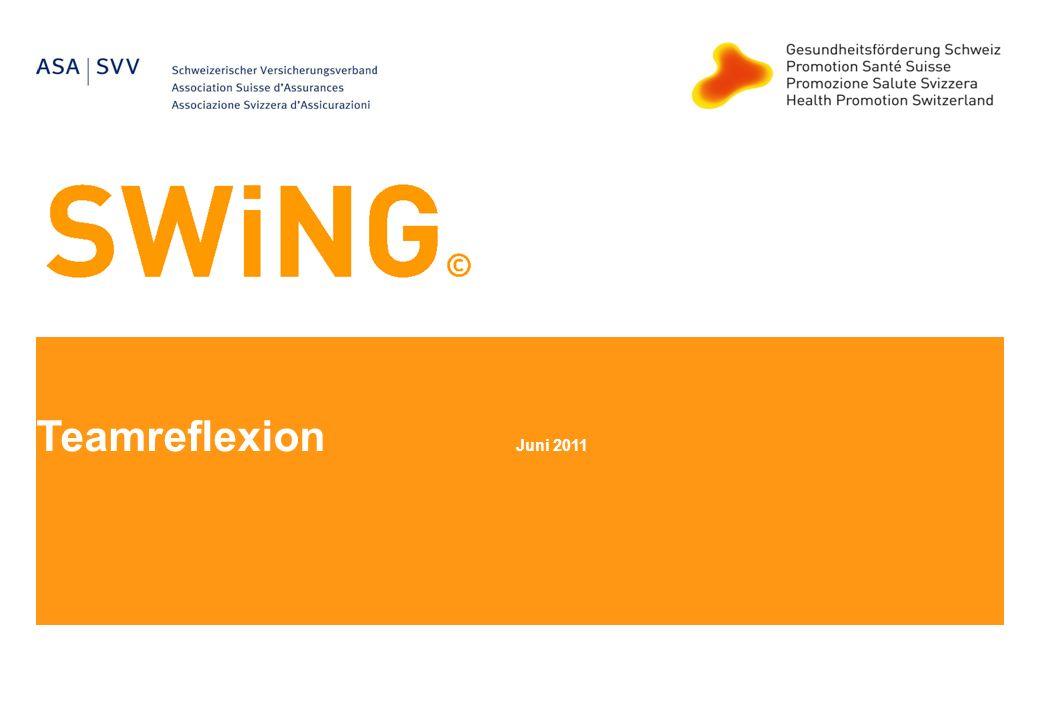 Teamreflexion Juni 2011