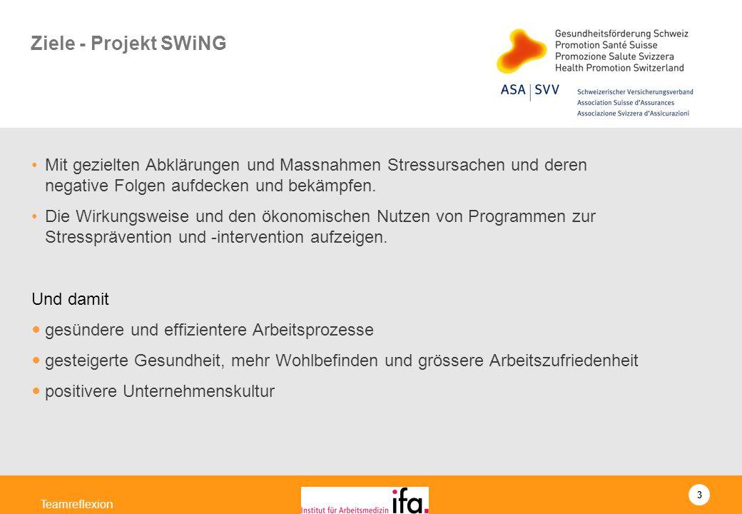 Ziele - Projekt SWiNG Mit gezielten Abklärungen und Massnahmen Stressursachen und deren negative Folgen aufdecken und bekämpfen.