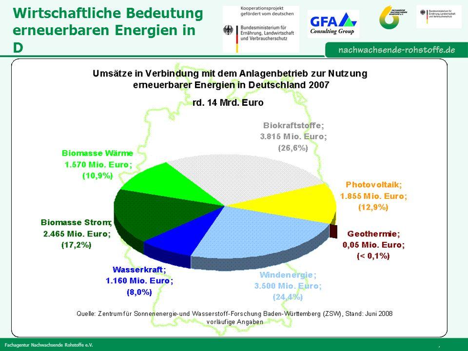 Wirtschaftliche Bedeutung erneuerbaren Energien in D