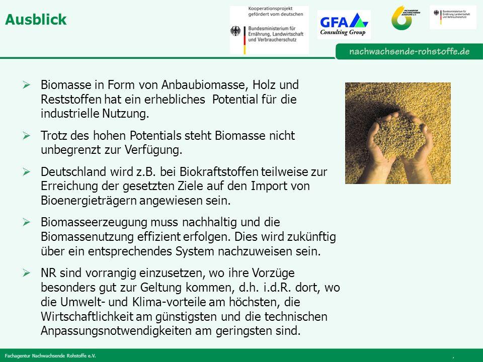 Ausblick Biomasse in Form von Anbaubiomasse, Holz und Reststoffen hat ein erhebliches Potential für die industrielle Nutzung.