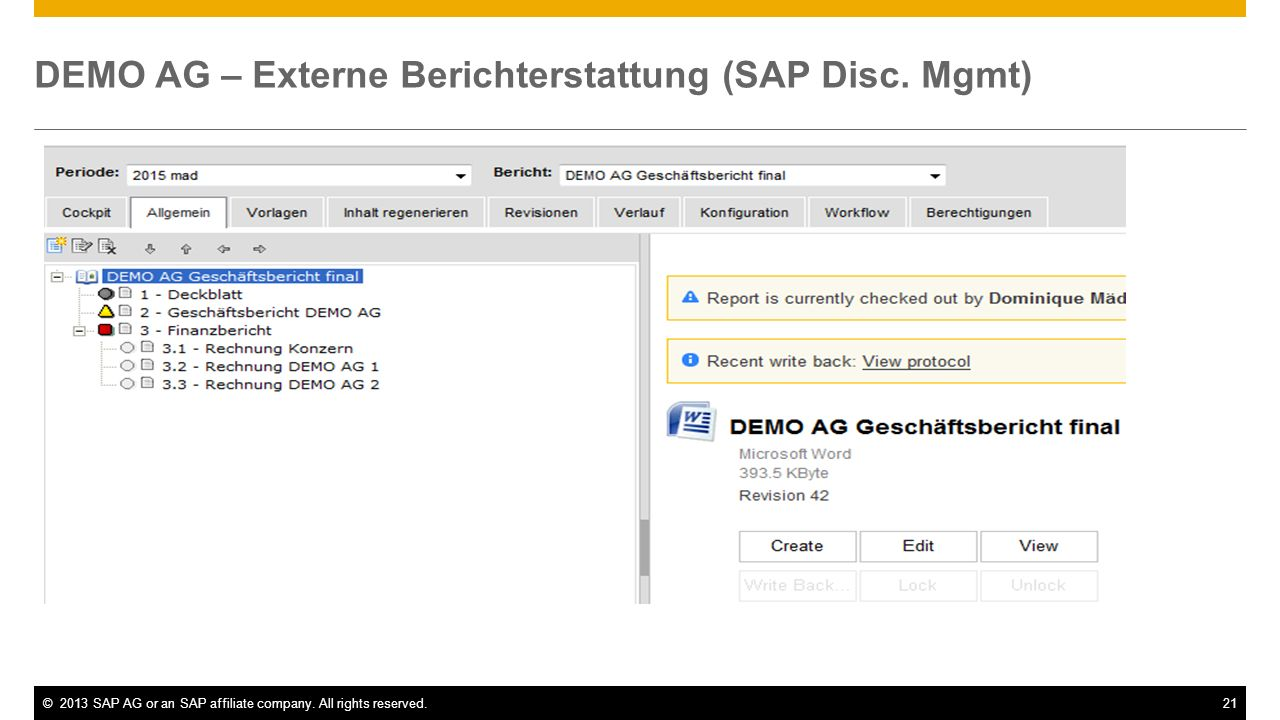 DEMO AG – Externe Berichterstattung (SAP Disc. Mgmt)