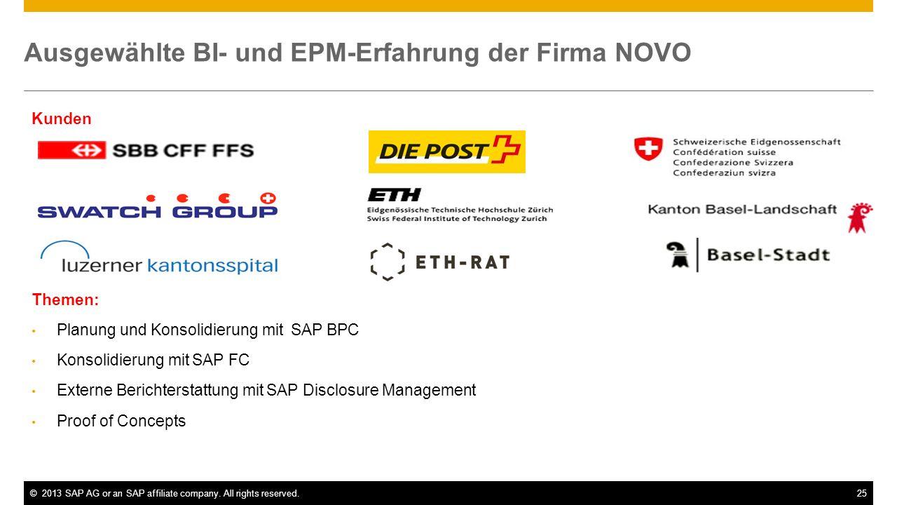 Ausgewählte BI- und EPM-Erfahrung der Firma NOVO