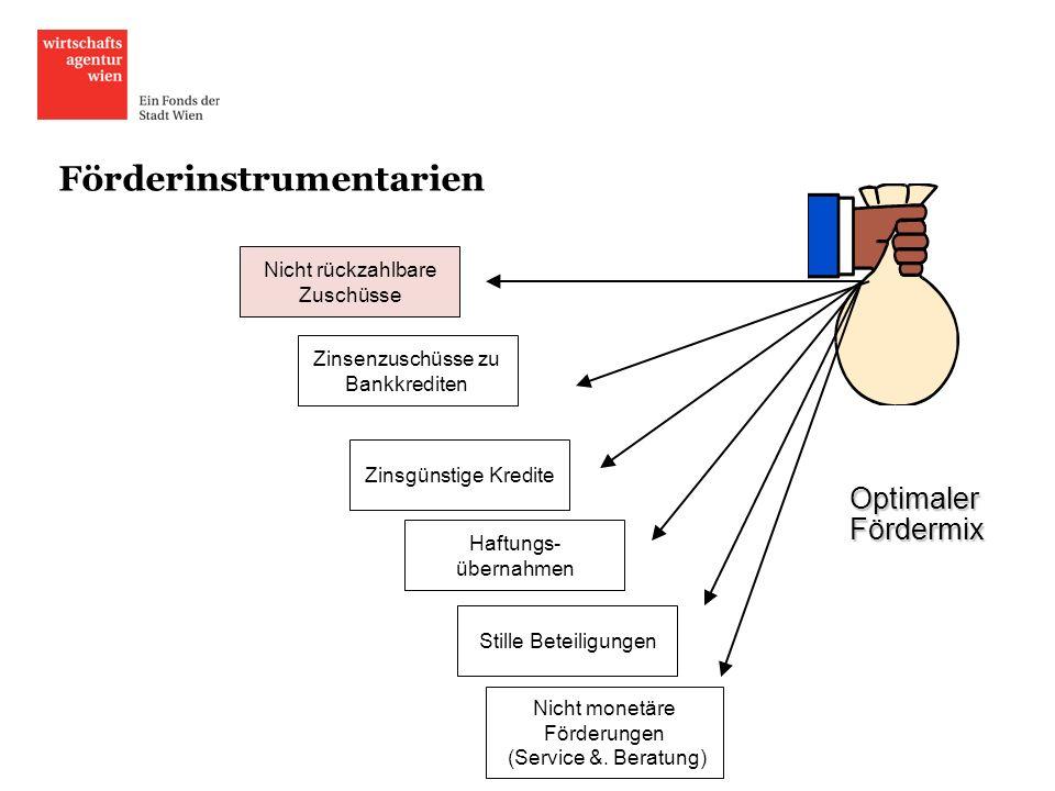 Förderinstrumentarien