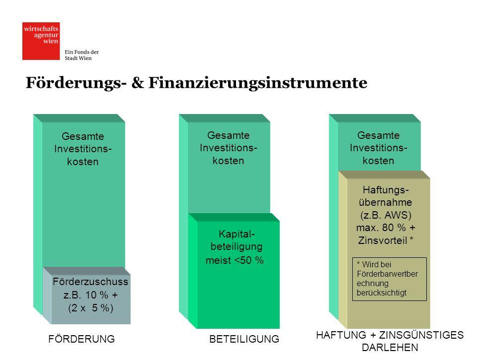 Förderungs- & Finanzierungsinstrumente