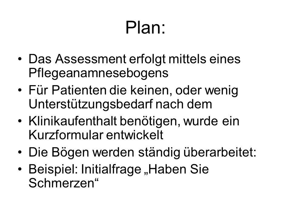 Plan: Das Assessment erfolgt mittels eines Pflegeanamnesebogens