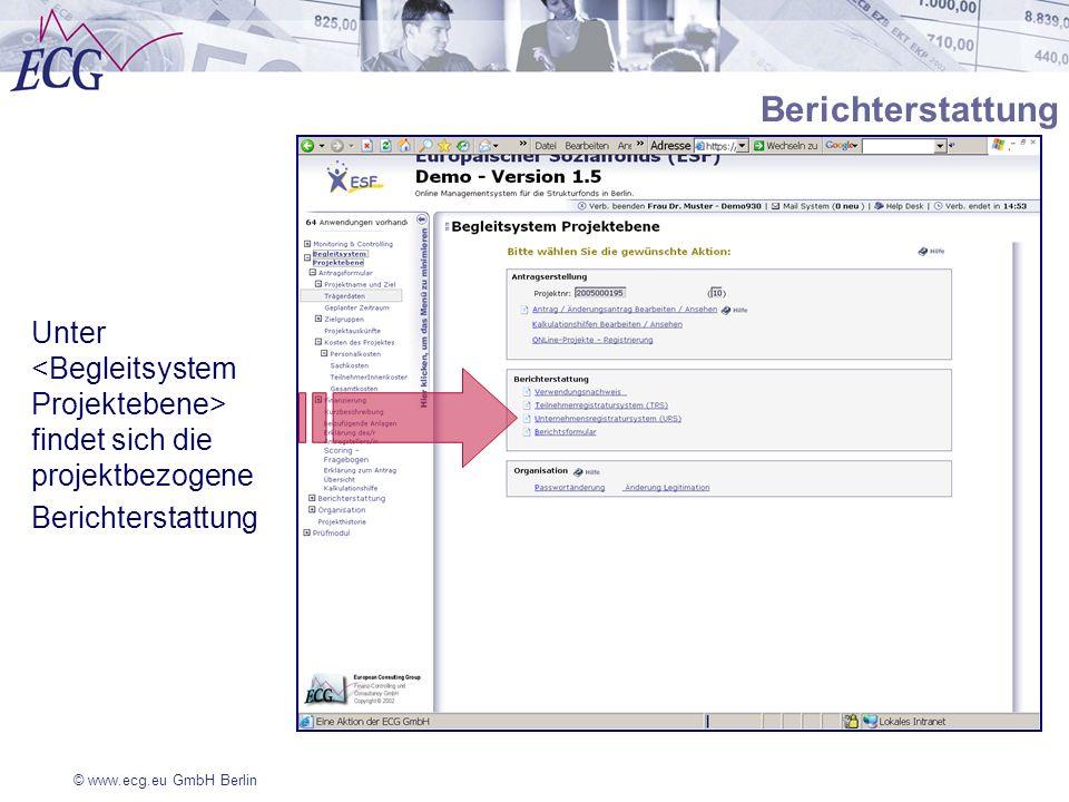 Berichterstattung Unter <Begleitsystem Projektebene> findet sich die projektbezogene.