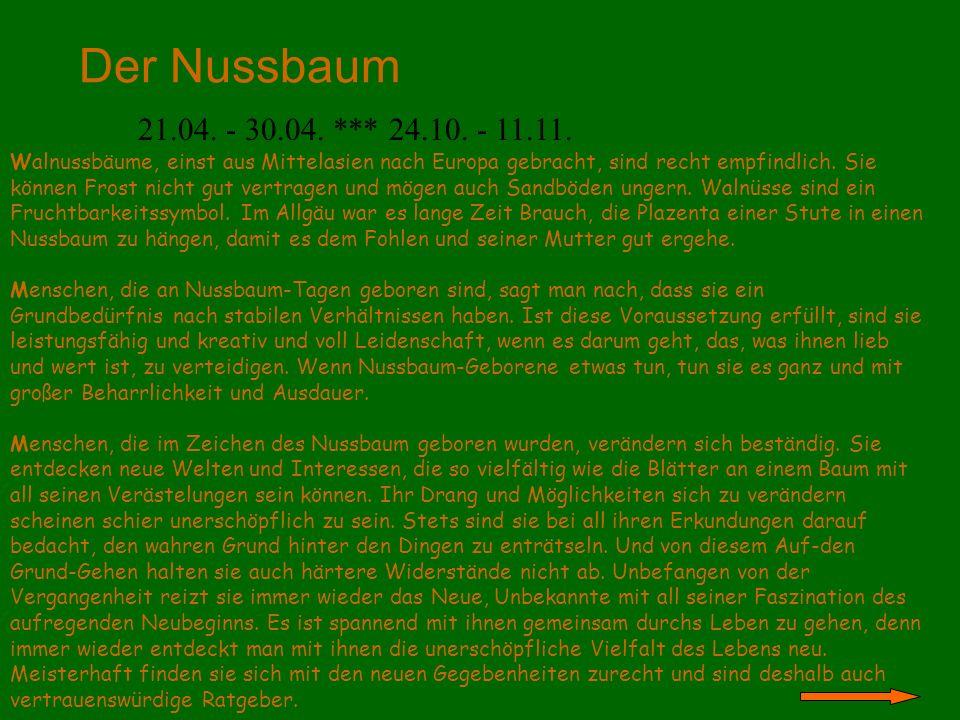 Der Nussbaum 21.04. - 30.04. *** 24.10. - 11.11.