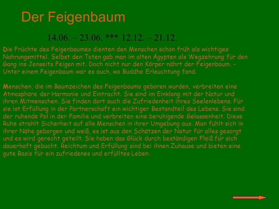 Der Feigenbaum 14.06. – 23.06. *** 12.12. – 21.12.