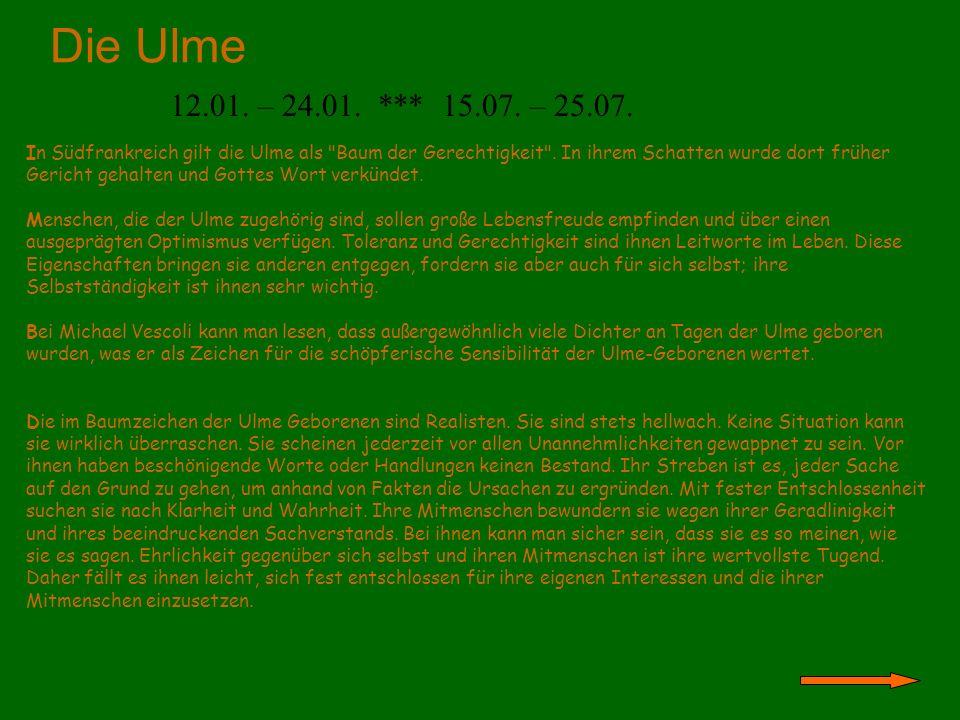 Die Ulme 12.01. – 24.01. *** 15.07. – 25.07.