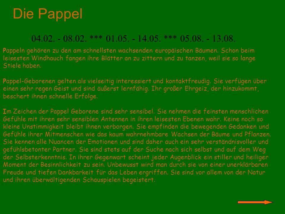 Die Pappel 04.02. - 08.02. *** 01.05. - 14.05. *** 05.08. - 13.08.