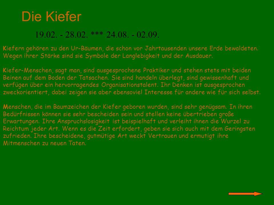 Die Kiefer 19.02. - 28.02. *** 24.08. - 02.09.