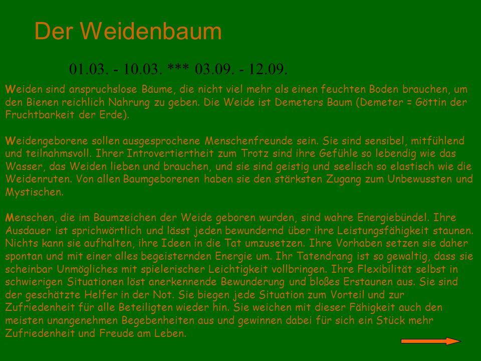 Der Weidenbaum 01.03. - 10.03. *** 03.09. - 12.09.