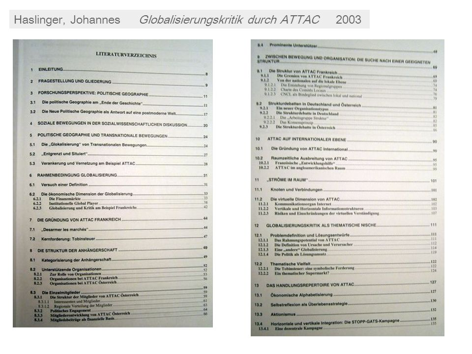 Haslinger, Johannes Globalisierungskritik durch ATTAC 2003