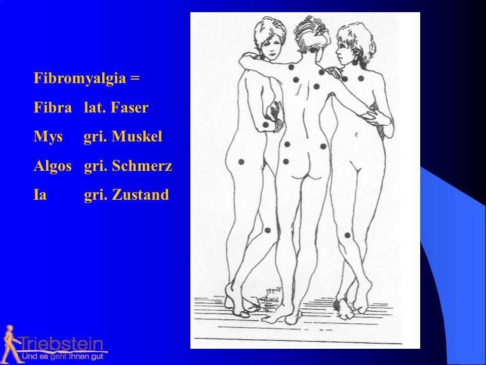 Fibromyalgia = Fibra lat. Faser Mys gri. Muskel Algos gri. Schmerz Ia gri. Zustand