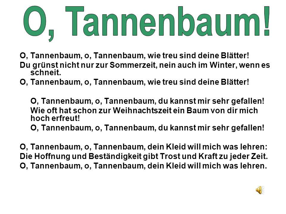 O, Tannenbaum! O, Tannenbaum, o, Tannenbaum, wie treu sind deine Blätter! Du grünst nicht nur zur Sommerzeit, nein auch im Winter, wenn es schneit.